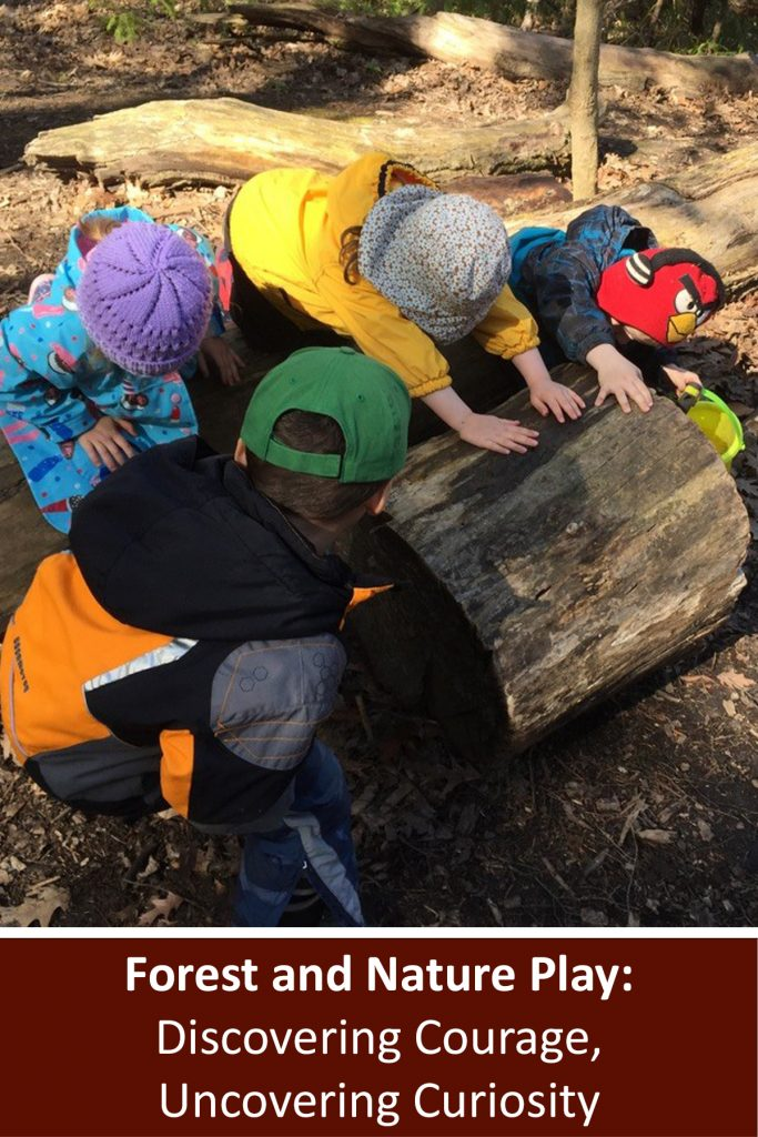 """Webinar title written in white on a brown background reads """"Forest and Nature Play: Discovering Courage, Uncovering Curiosity"""". Above is a photo of a group of children working together to roll a large section of a cut tree trunk across the ground outside in a forest"""
